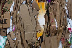 Carton boxes waste